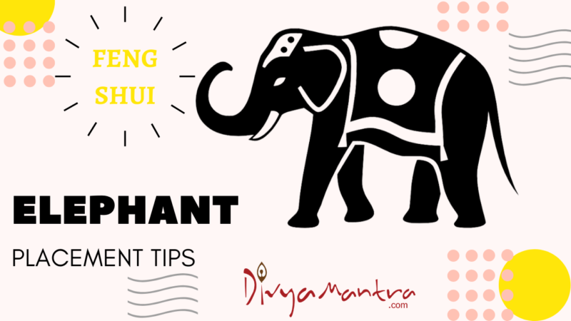 Feng Shui Elephant Uses, Placement, Meaning, Trunk up, Trunk Down Elephant