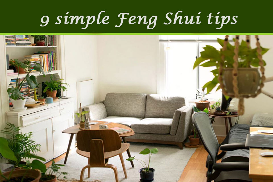 9 EASY WAYS TO FENG SHUI YOUR HOUSE