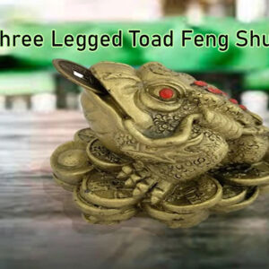 Three Legged Toad Feng Shui – Feng Shui Three Legged Money Toad Uses And Placement